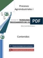 Unidad III Procesos Agroindustriales i Tema 2 Procesos Tec Curtiembre
