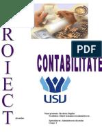Proiect Contabilitate - Bilanturi21