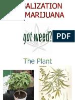 Legalization of Marijuana - Got Weed?