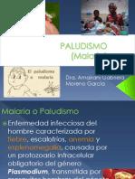 Plasmodium... Malaria... Paludismo