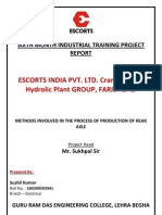 101125206 Escorts Summer Training Project Report