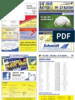 Stadionzeitung Nr.08 27.04.2013