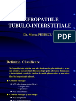 9 nefropatii tubulo interstitiale