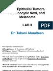 Lab 3 (Oral Epithelial Tumors)