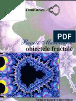 Obiecte Fractale Benoit Mandelbrot2