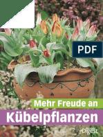 Mehr Freude an Kuebelpflanzen
