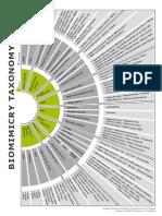 Biomimética taxonómica