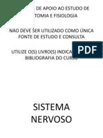 Sistema Nervoso Pratica