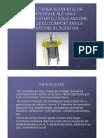 filehost_PREZENTARE