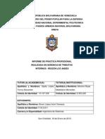 Informe de Pasantias Iromi-2013