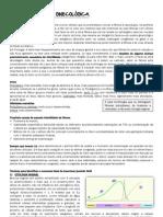 Apontamentos Gaspar.pdf