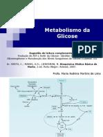 Aula 2 - Metabolismo da glicose (Farmácia 2013)