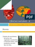 Power Point Nr. 2 - Biomas