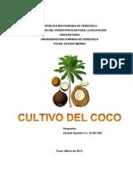 Cultivo de Coco