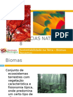 Power Point Nr. 2 - Biomas