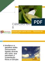 Powerpoint nr. 2 - Interacções seres vivos -Factores do Ambiente - Solo