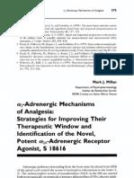 Adrenergic Mechanisms