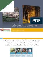 Powerpoint nr. 1 - Fluxo de energia e ciclo da matéria - Cadeias alimentares