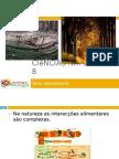 Powerpoint nr. 1 - Fluxo de energia e ciclo da matéria - teias alimentares
