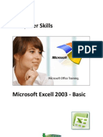 Curs Microsoft Excel 2003 Basic