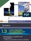 Powerpoint nr. 2 - Efeitos da Catástrofes Naturais (Intervenção humana)
