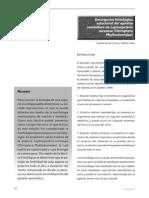 Descripción histológica estacional del hepitelio seminífero de Leptonycteris curasoae (Chiroptera Phyllostomidae)