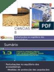 Powerpoint nr. 2 - Efeitos da Catástrofes Naturais (Medidas de protecção das Populações)