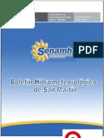Boletin San Martin Febrero-2013