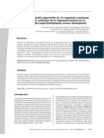 Generación de anión superóxido O2 en respuesta a zymosan (β, 1-3 glucanos), activador de la respuesta inmune en la cochinilla fina del nopal (Dactylopius coccus