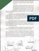 Carta de los legisladores nacionales de la oposición a los legisladores del FPV 2