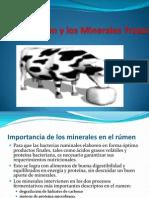 7. Nutrición y minerales trazas