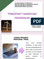 Procesos y Garantias