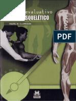Proceso Evaluativo Musculo Esqueletico
