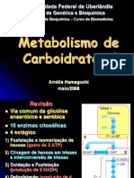 Aula 02 - Metabolismo de Carboidratos