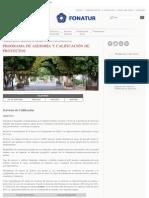 PROGRAMA DE ASESORÍA Y CALIFICACIÓN DE PROYECTOS