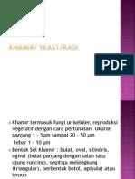 khamir.pptx