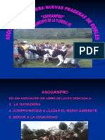 Diapositivas Finales Asoganpro