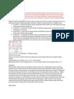 Analisa jurnal ZBP