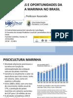 Perspectivas e Oportunidades Da Piscicultura Marinha No Brasil - Akberto j. p. Nunes