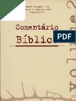 COMENTÁRIO BÍBLICO