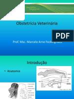 Obstetrícia+Veterinária+aula+1