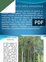 Flora de la selva amazónica