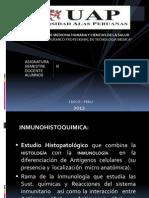114098037-inmunohistoquimica