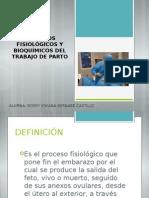 Procesos fisiológicos y bioquímicos del trabajo de parto