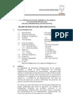 Silabo Ps. Organizacional 2006