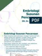 embriologi-susunan-pencernaan
