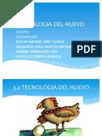 Tecnologia Del Huevo Expo