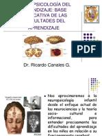 Ricardo Canales Neuropsicologia