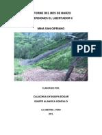 Informe Final Marzo 2013