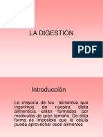 La Digestionnnnnn